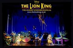 lionking-wp-uk-12