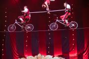 Circus-1903-300-of-440-min